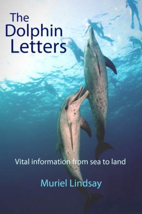 dolphin_letters
